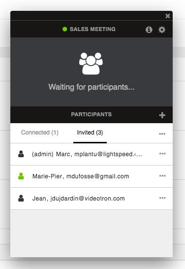 Conference widget participants